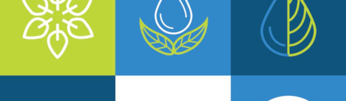 Presentan la Asociación Mujeres en Energías Renovables en México